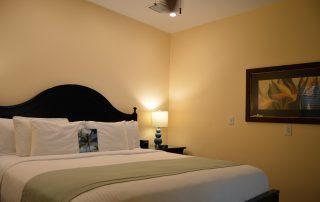Douglas House Key West Triangle Palm Superior King Suite